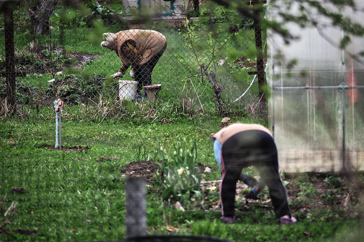 Na dači u selu Kuški, Taldomski rajon Moskovske oblasti.
