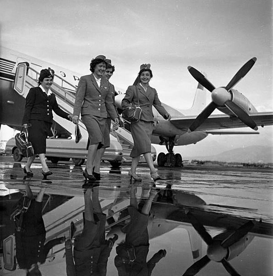 Девушки-бортпроводницы