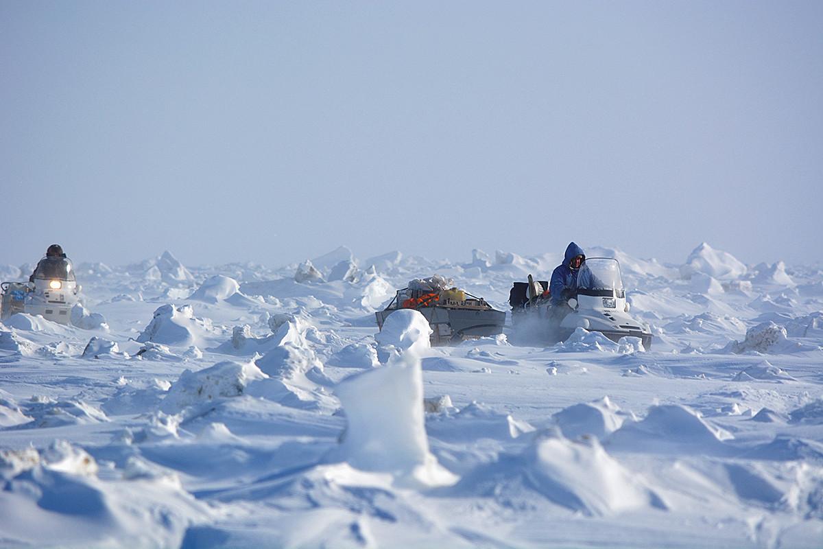 Bear patrol in Chukotka