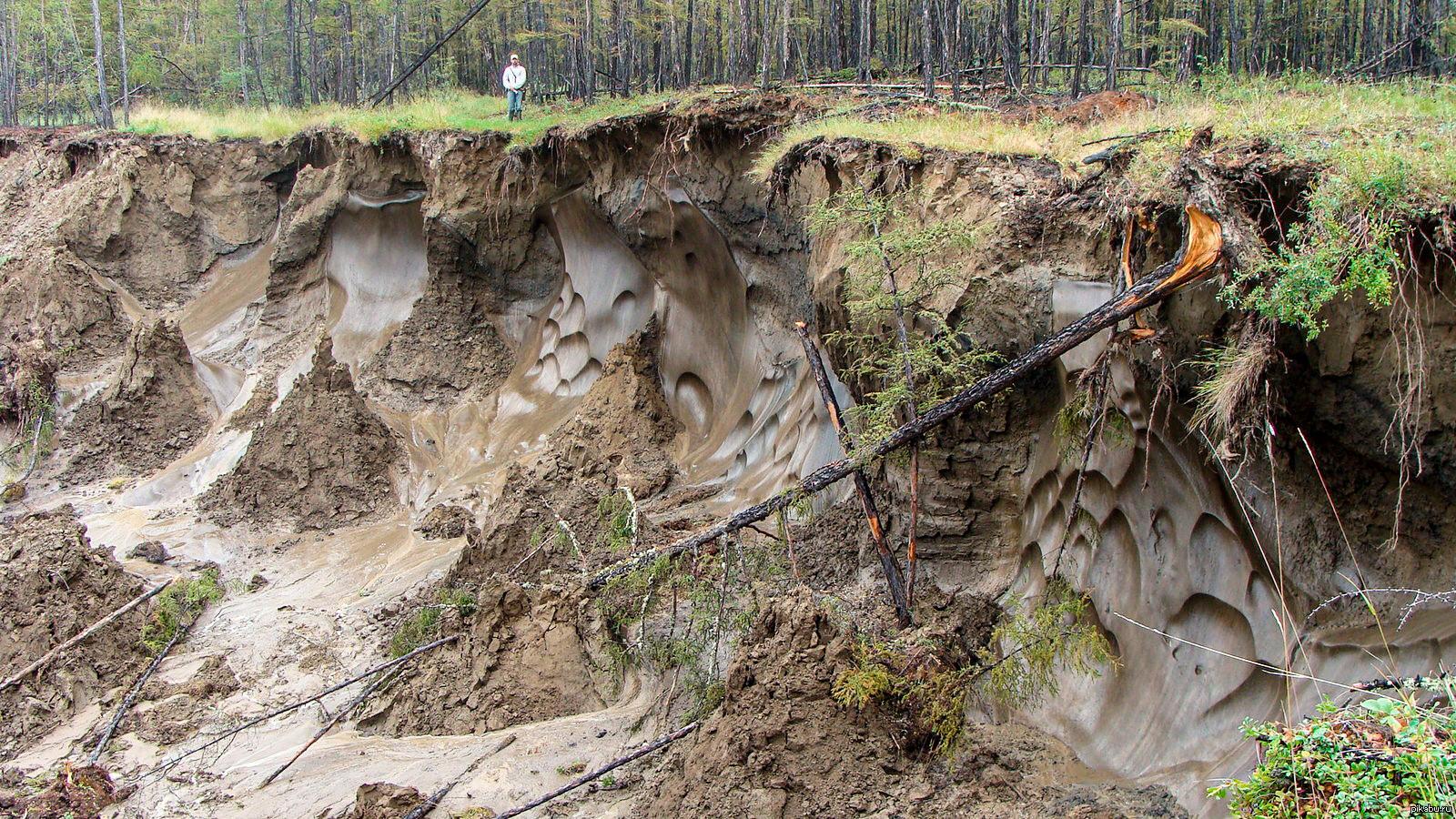 Pri taljenju permafrosta se mikrobom na površini izpostavlja nekoč zamrznjen biološki material, zaradi česar se sproščajo dodatne količine toplogrednih plinov, predvsem metana.