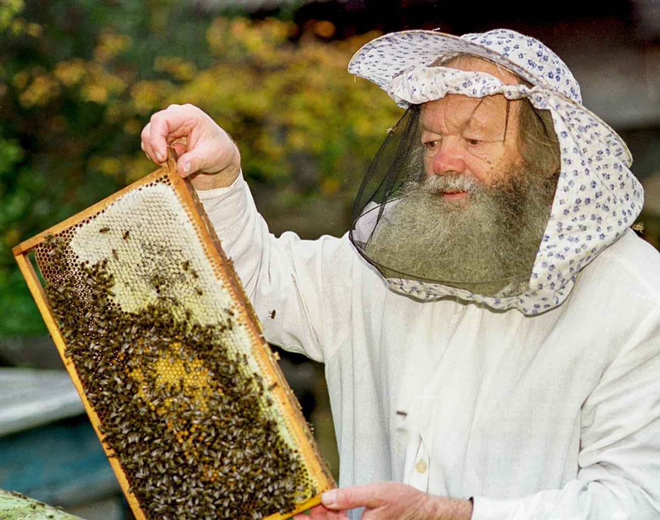 Una fase della produzione del miele
