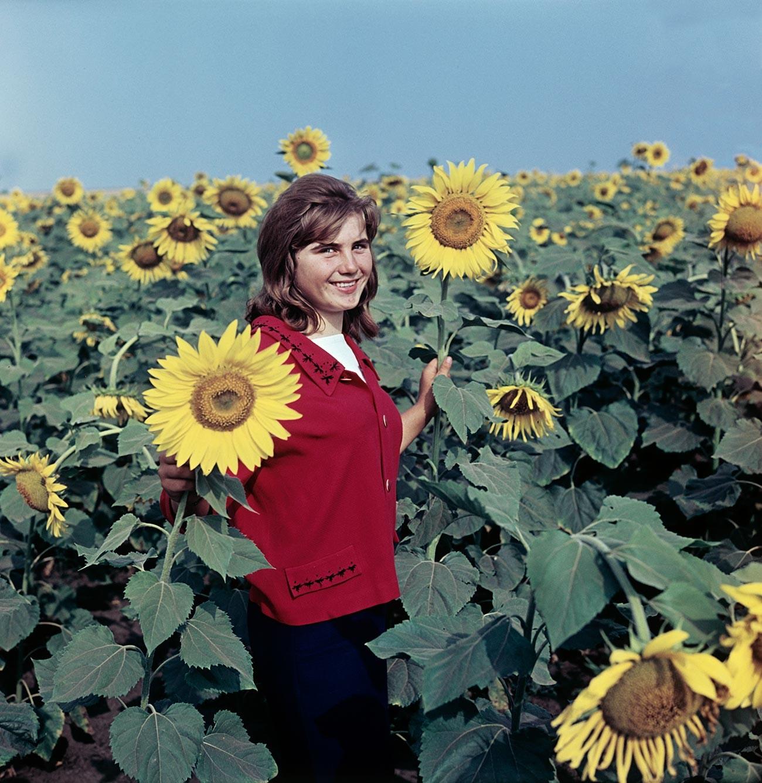 """Olia Grigorenko, un trabajador de la granja colectiva """"Testamento de Lenin"""", en un campo de girasoles, 1966."""