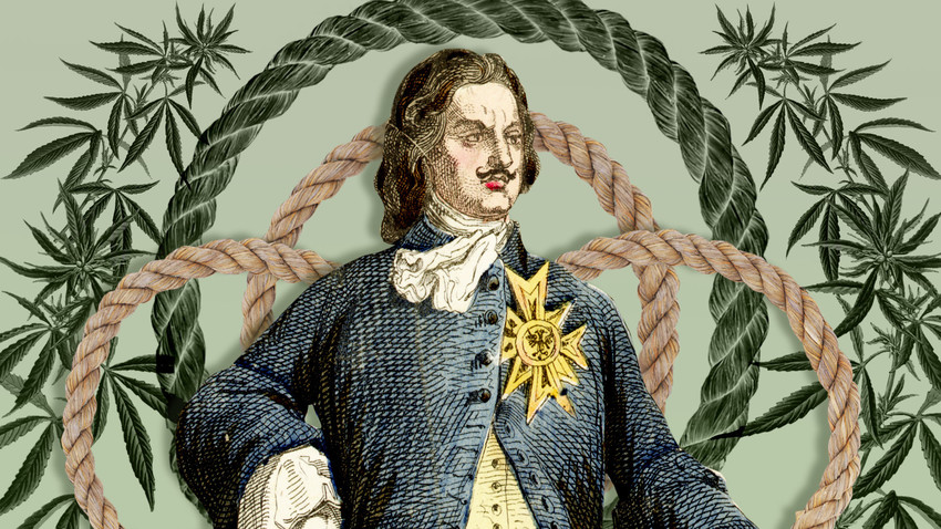 Pietro il Grande sapeva come usare la pianta di canapa… ma per i suoi bisogni materiali