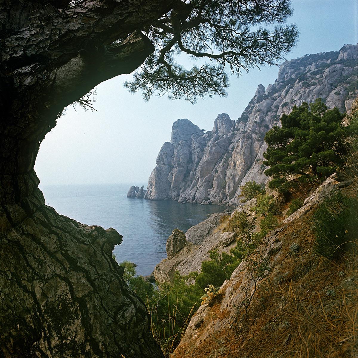 Природа на јужната ривиера на Крим, 1981 година.