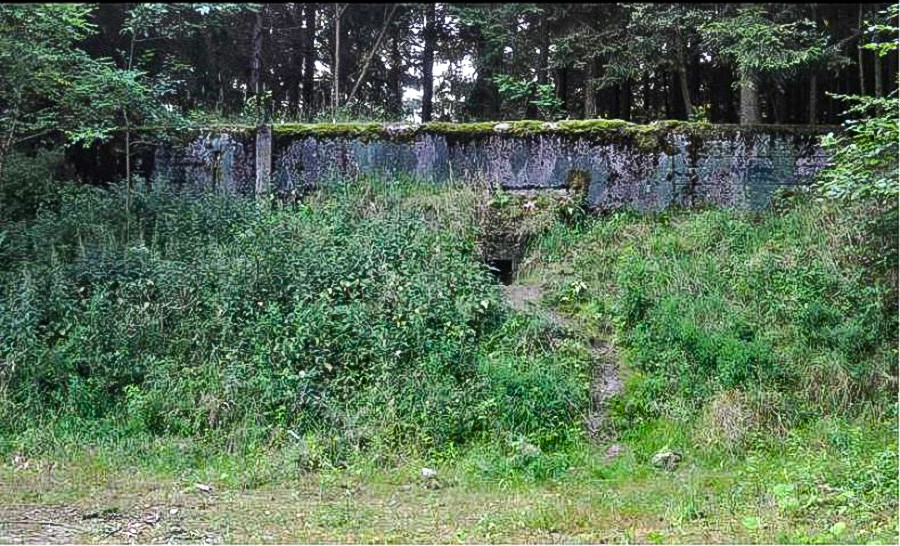 The nuclear bunker where the ant 'colony' was found. The bunker was abandoned after the fall of the Soviet Union.