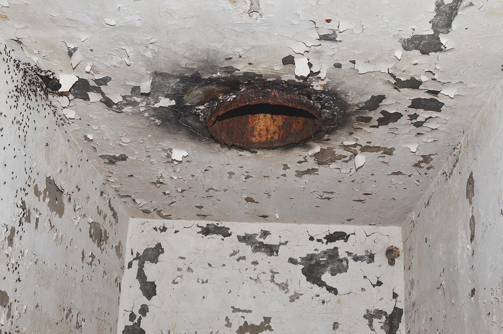 Горниот дел на мравјата патека. Мравките од левата страна не можеле да се движат по таванот и со самото тоа не можеле да дојдат до вентилациската цевка. Фотографија направена на 18.09.2016.