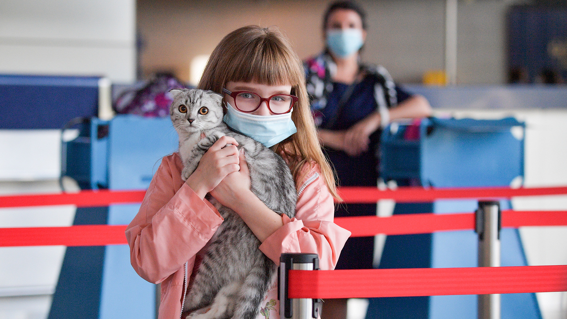 A girl holds a kitten in her arms in one of the terminals at Vnukovo international airport