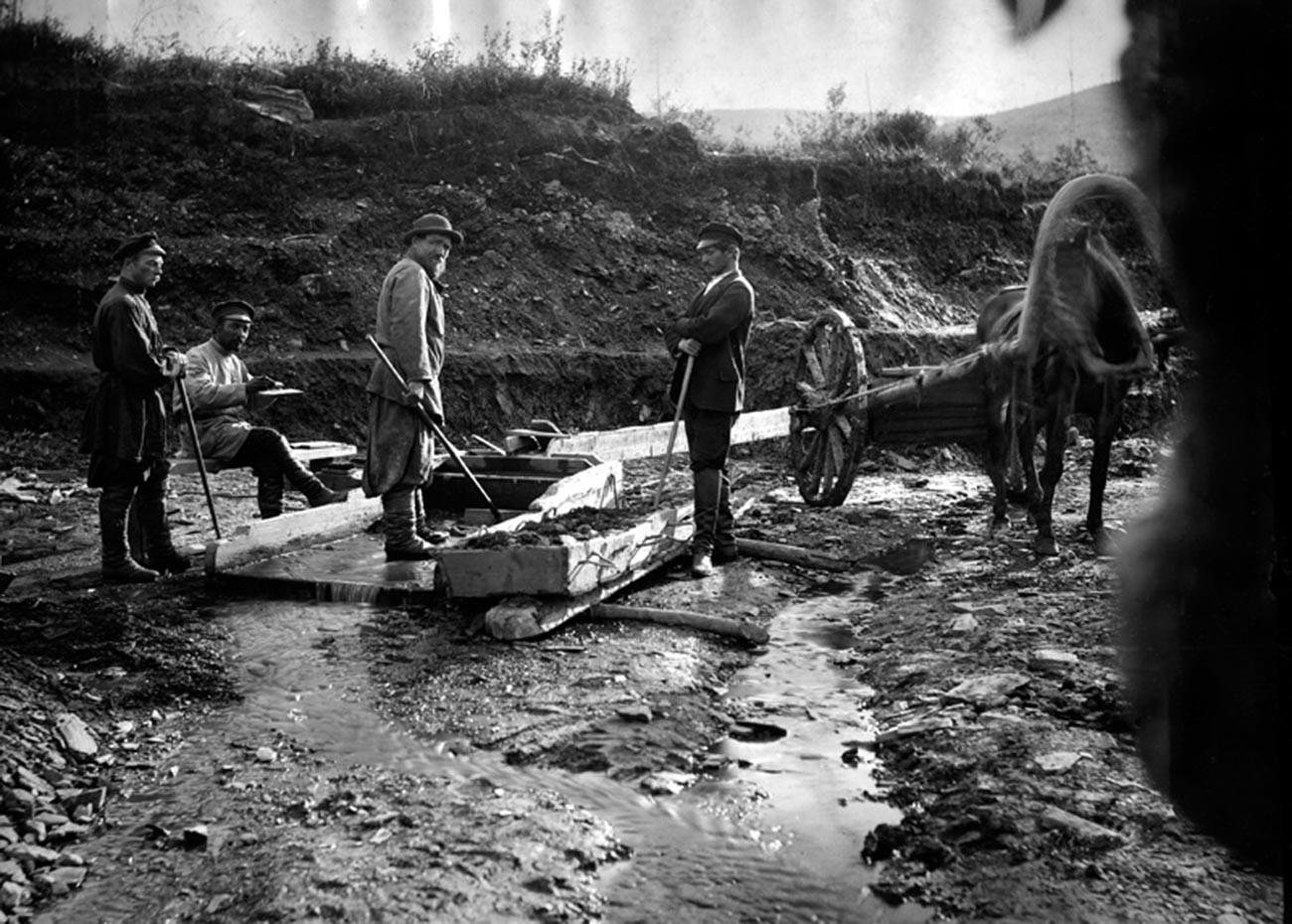Старатели за промывкой золотоносного песка.