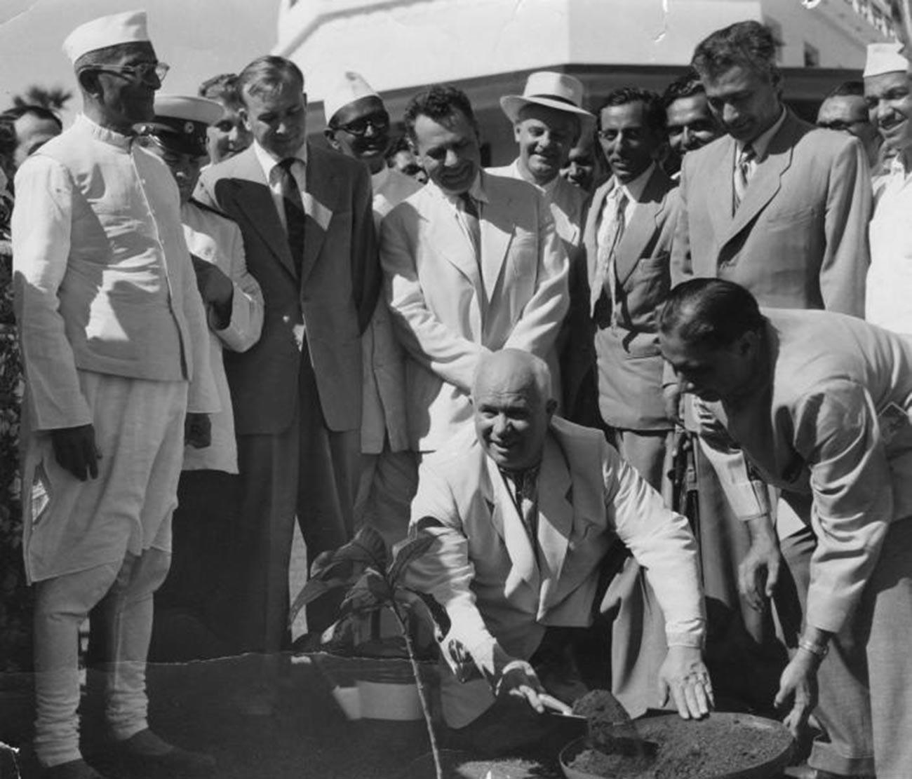 Khrushchev pianta un albero durante la sua visita ufficiale in India nel 1955
