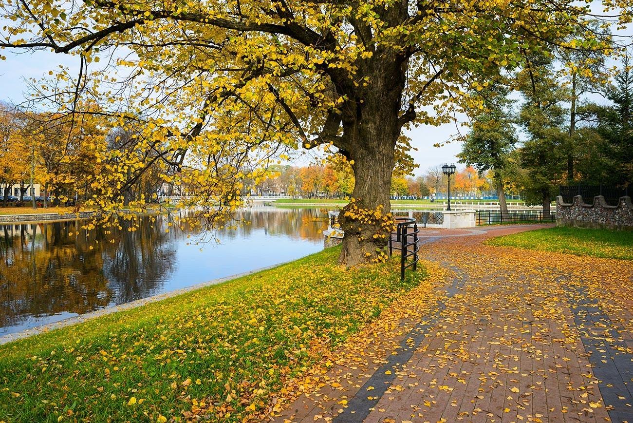 Jesen v Kaliningradu
