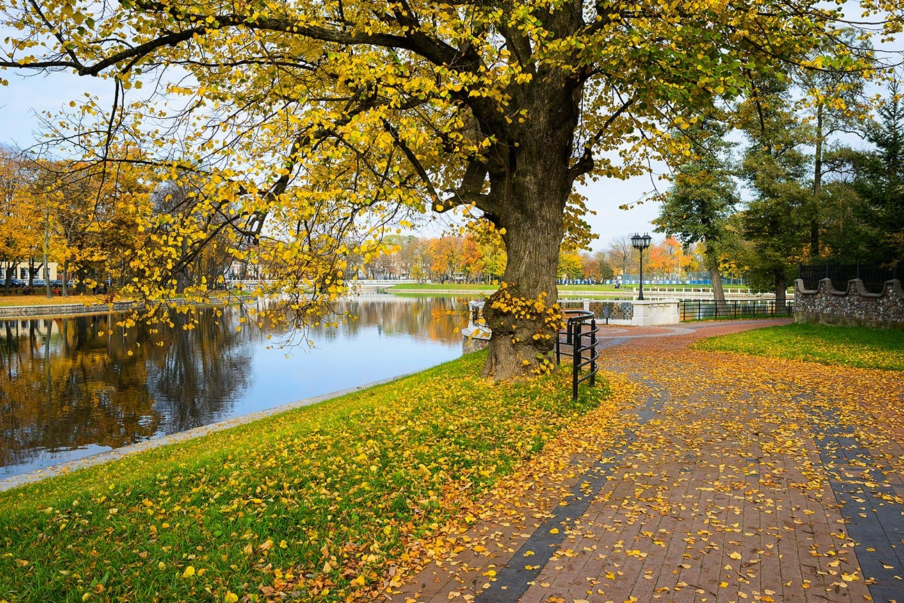 Musim gugur di Kaliningrad.
