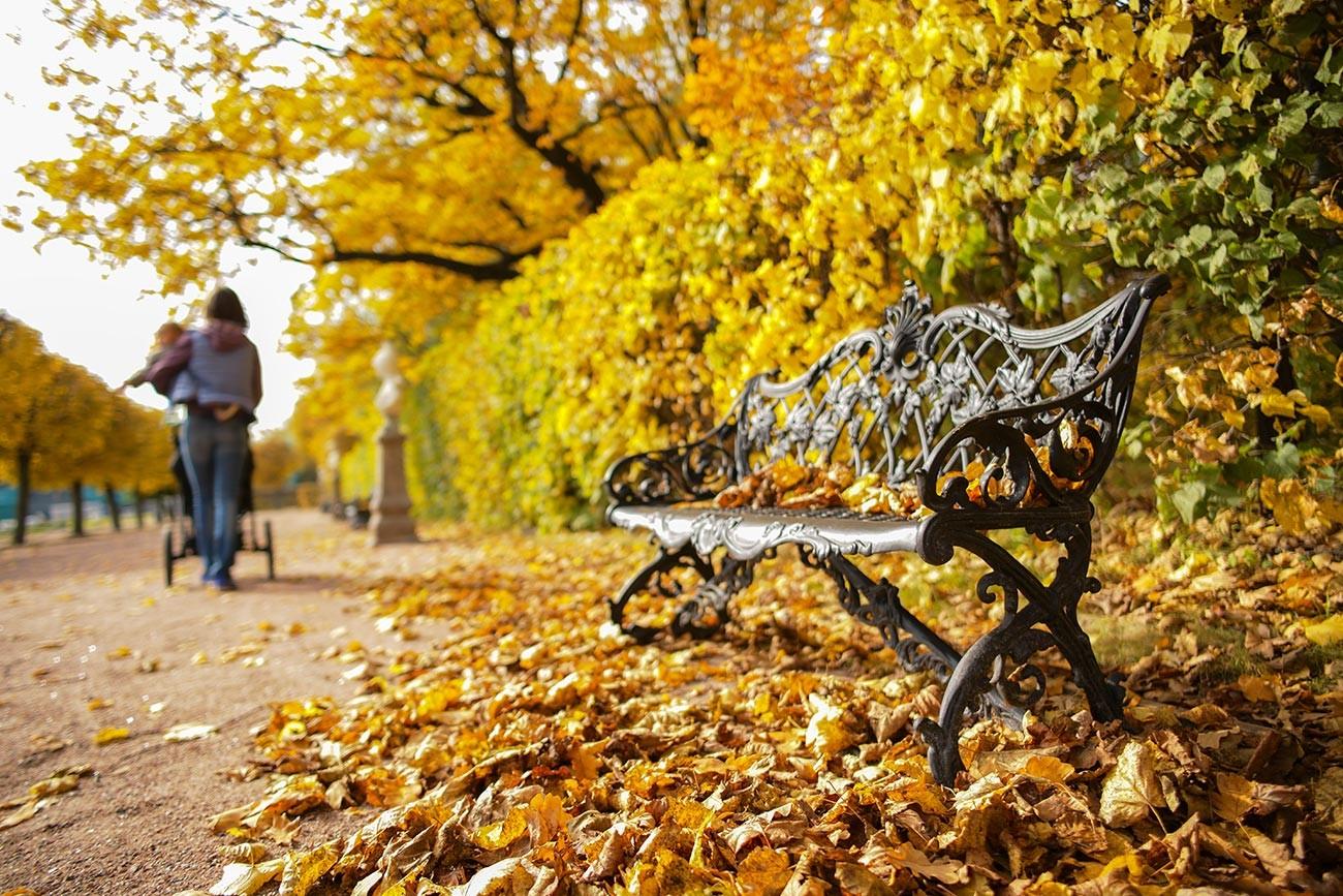 Musim gugur di kawasan perkebunan Kuskovo Moskow.