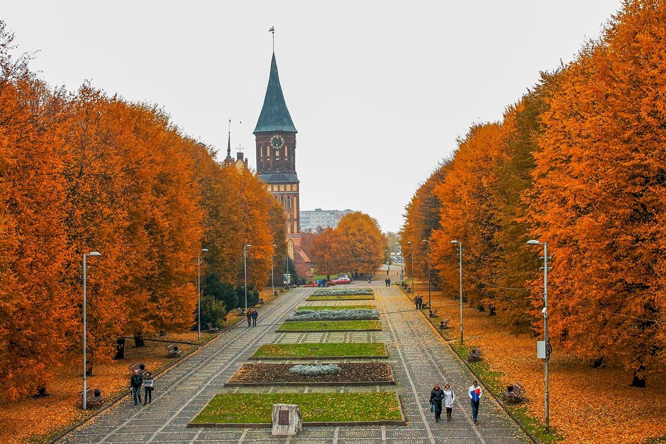 Musim gugur di Pulau Kant, Kaliningrad.