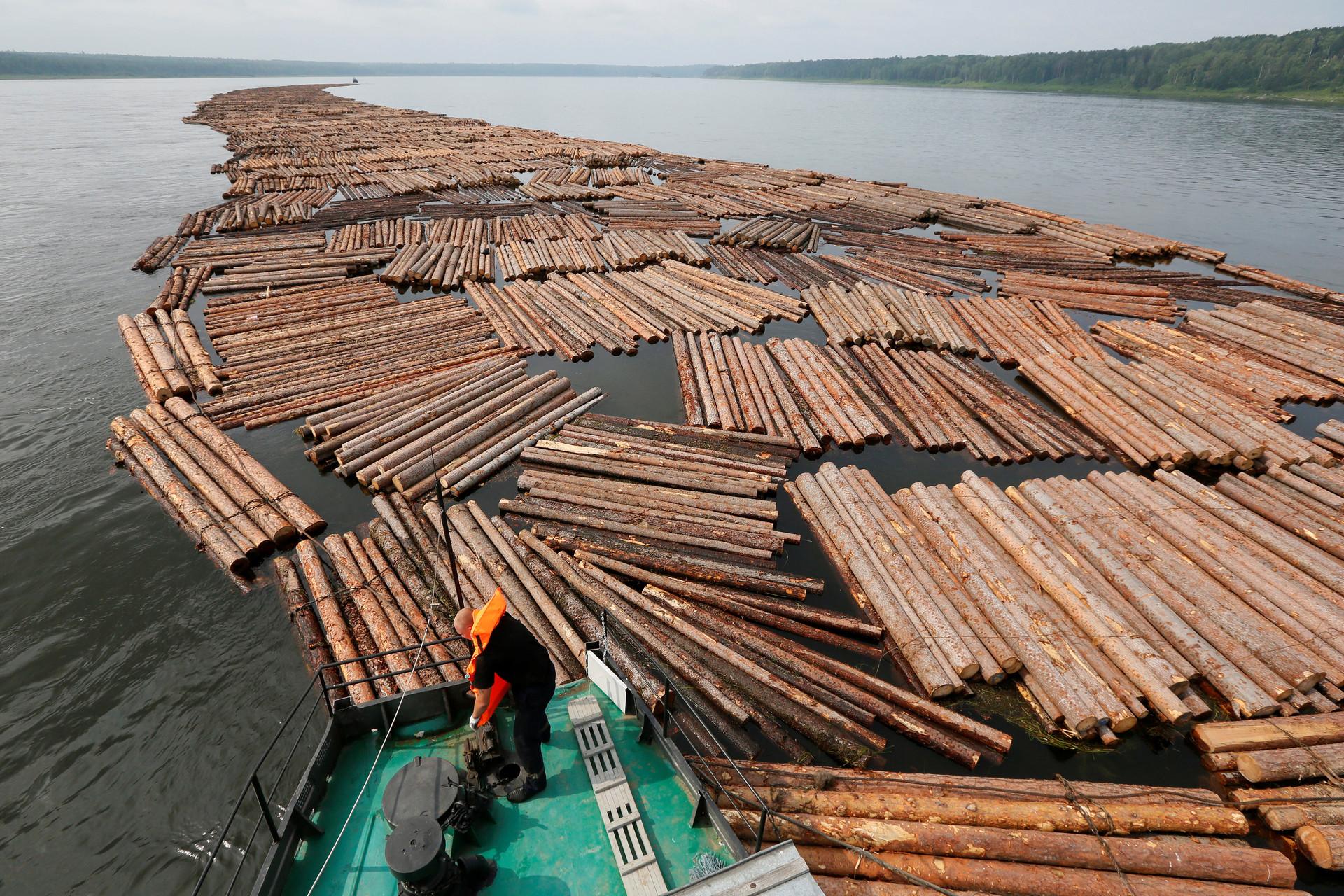 La Russia esporta in Italia perlopiù prodotti minerali, legname, metalli preziosi, pietre e prodotti chimici