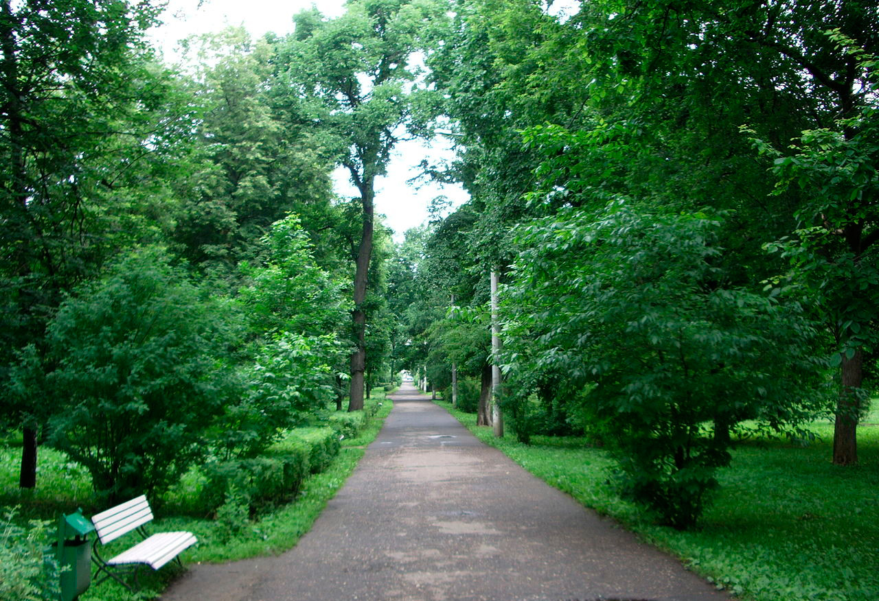 "Il parco Berjózovaja Roshcha (""Boschetto di betulle"")"