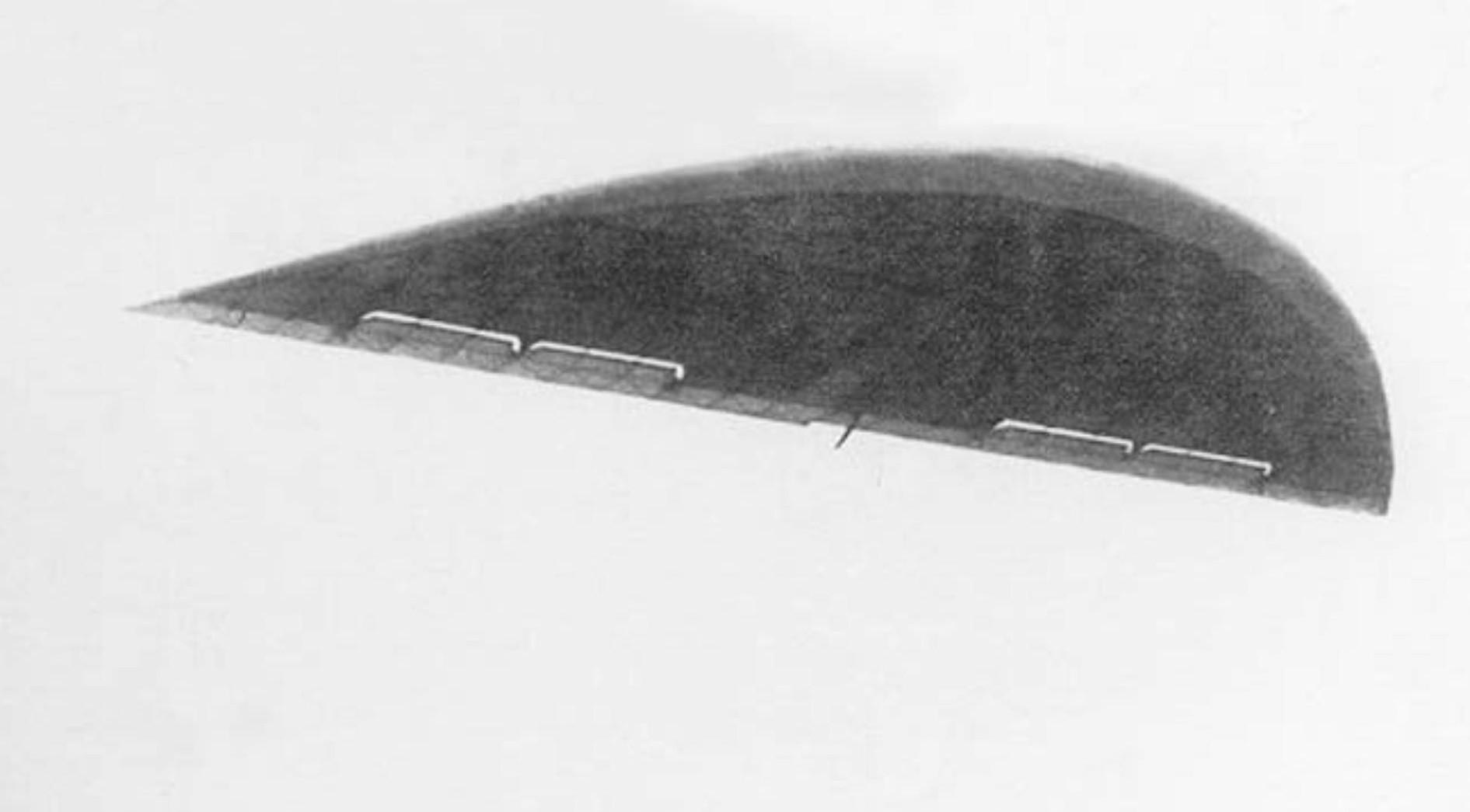 БИЧ-2 у лету