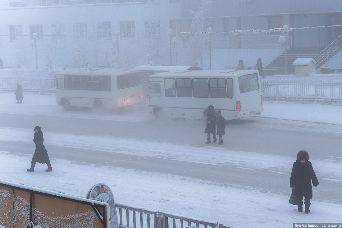 Buses in Yakutsk.