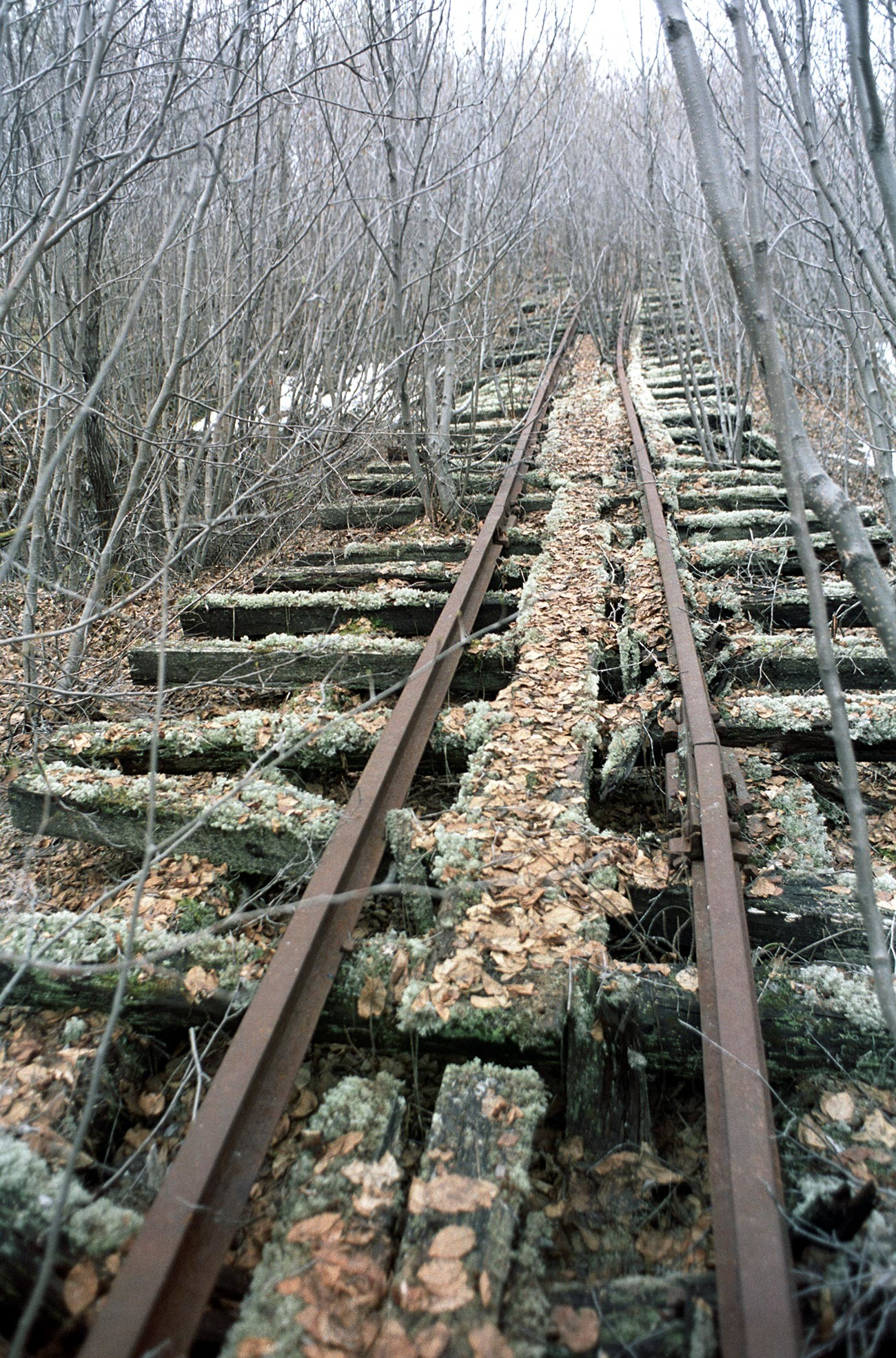 Sovjetsko rukovodstvo je 1949. godine donijelo odluku o izgradnji polarne pruge od Igarke do Saleharda ukupne dužine 1263 km.