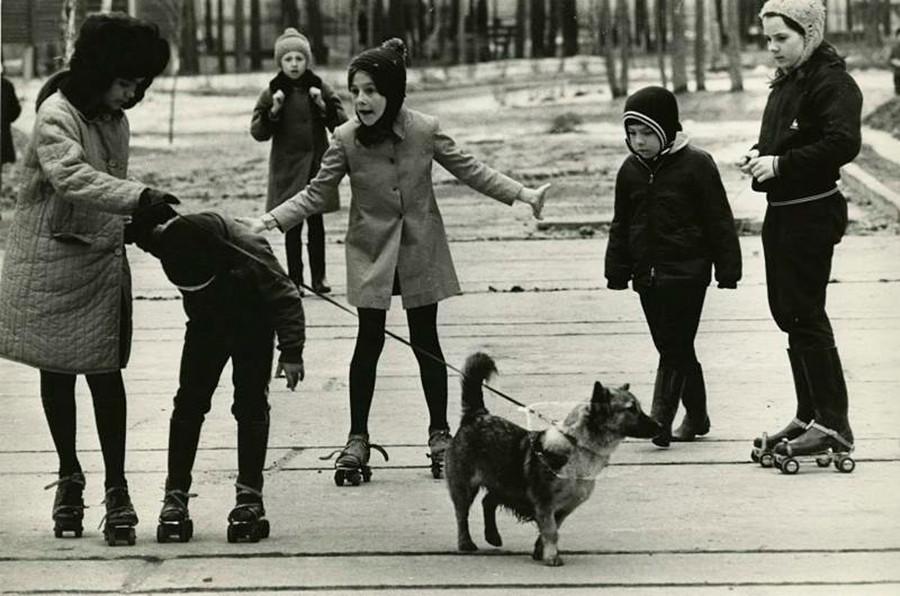 Crianças passeiam com cachorro.