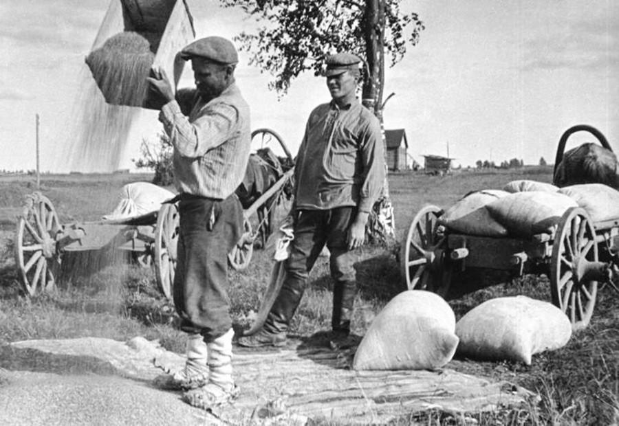 Начало коллективизации: крестьяне сдают зерно, 1928