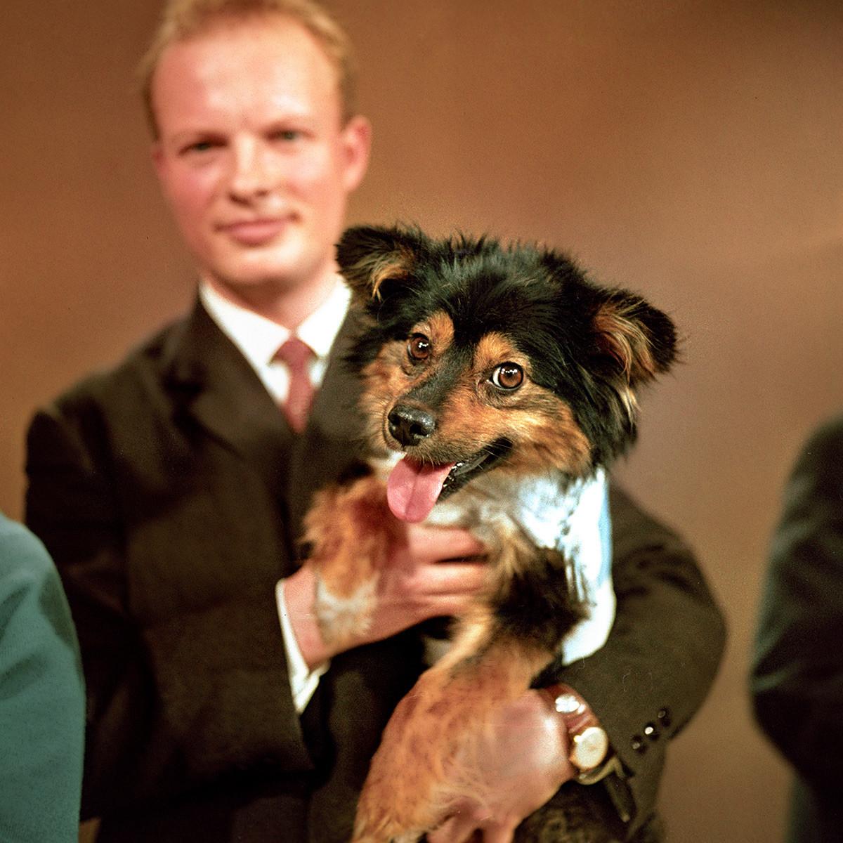Pas Ugoljok u studiju Središnje televizije.