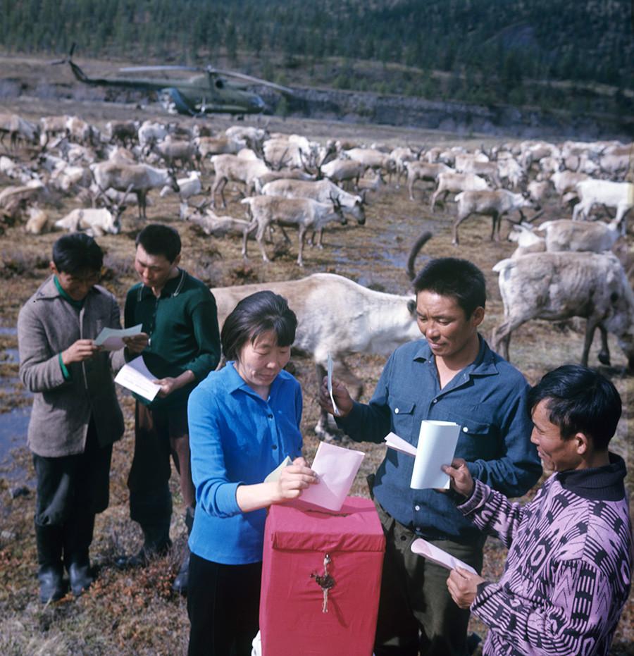 Volitve v Vrhovni sovjet ZSSR na eni od farm za vzrejo severnih jelenov, junij 1975