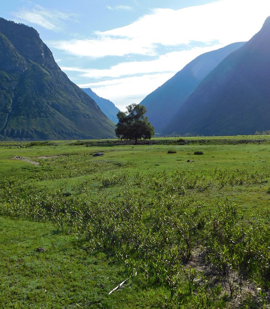 La valle del fiume Chulyshman