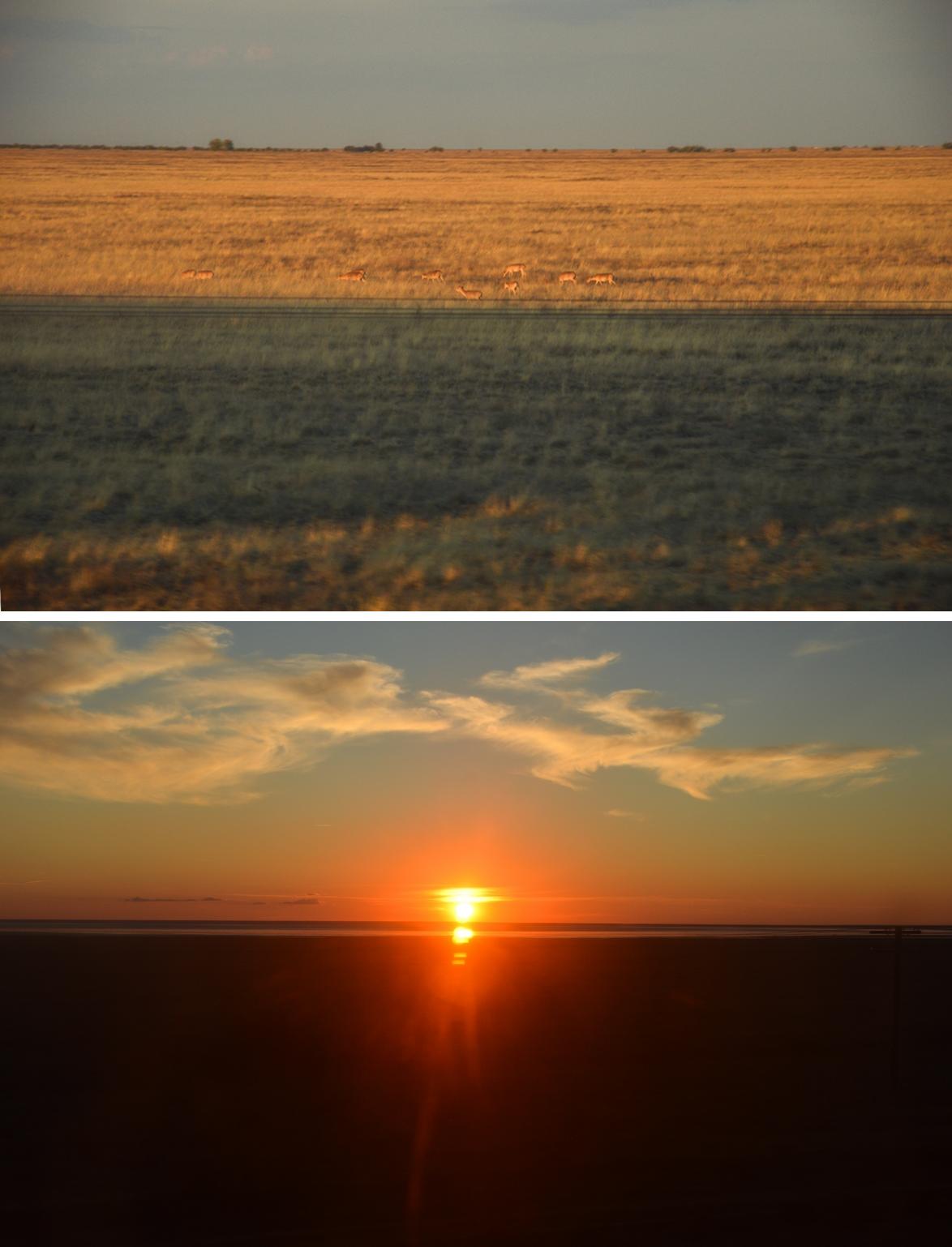 S'élancer dans un voyage sur les rails de Russie est immanquablement synonyme de spectacle imminent. En prenant la direction de la région d'Astrakhan, vers le Sud depuis Moscou, la steppe nue fait office de scène, les saïgas de danseurs et les somptueux couchers de soleil de tomber de rideau.