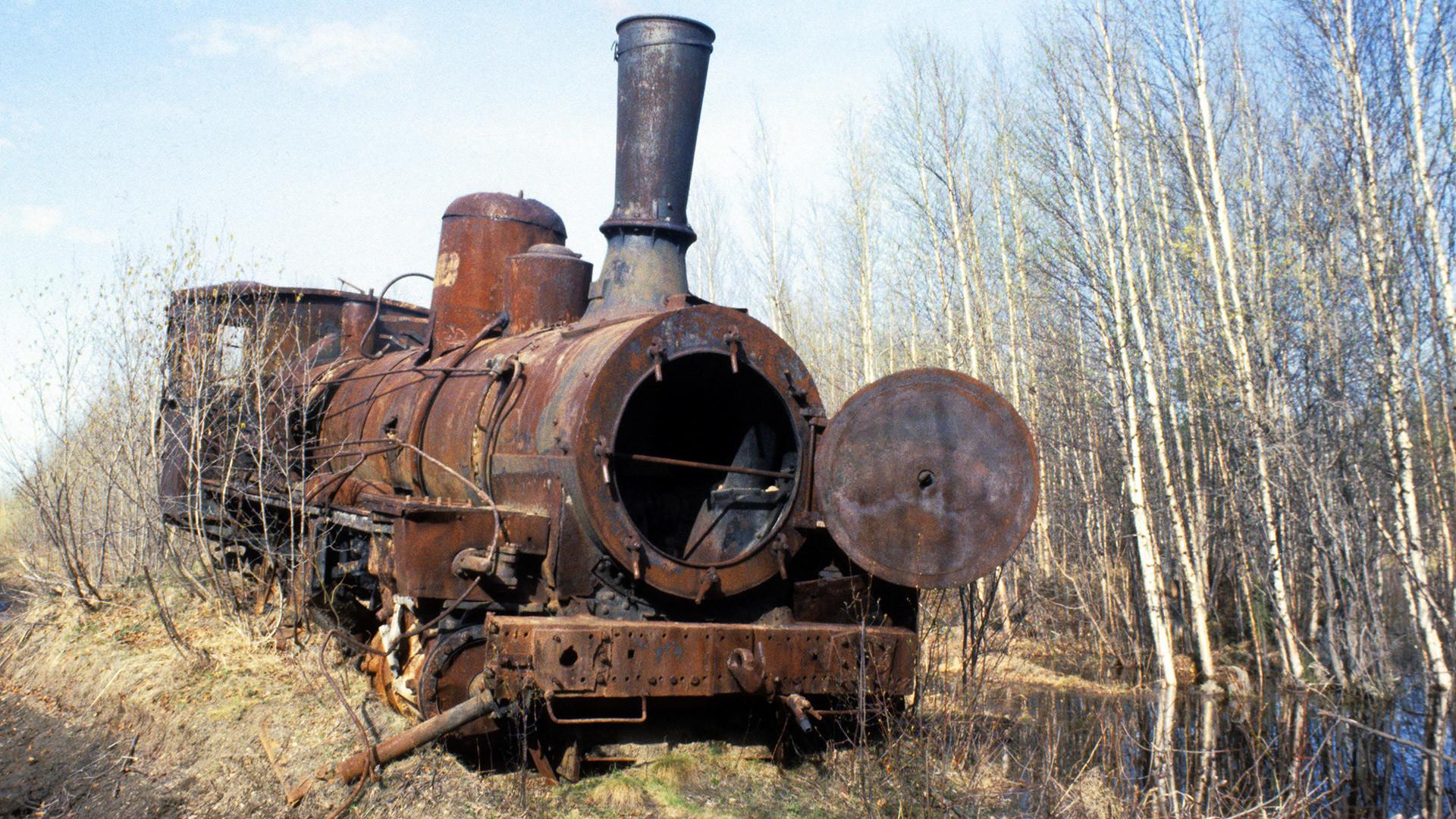 Советското раководство во 1949 година донело одлука за изградба на поларна пруга од Игарка до Салехард со вкупна должина од 1.263 километри.