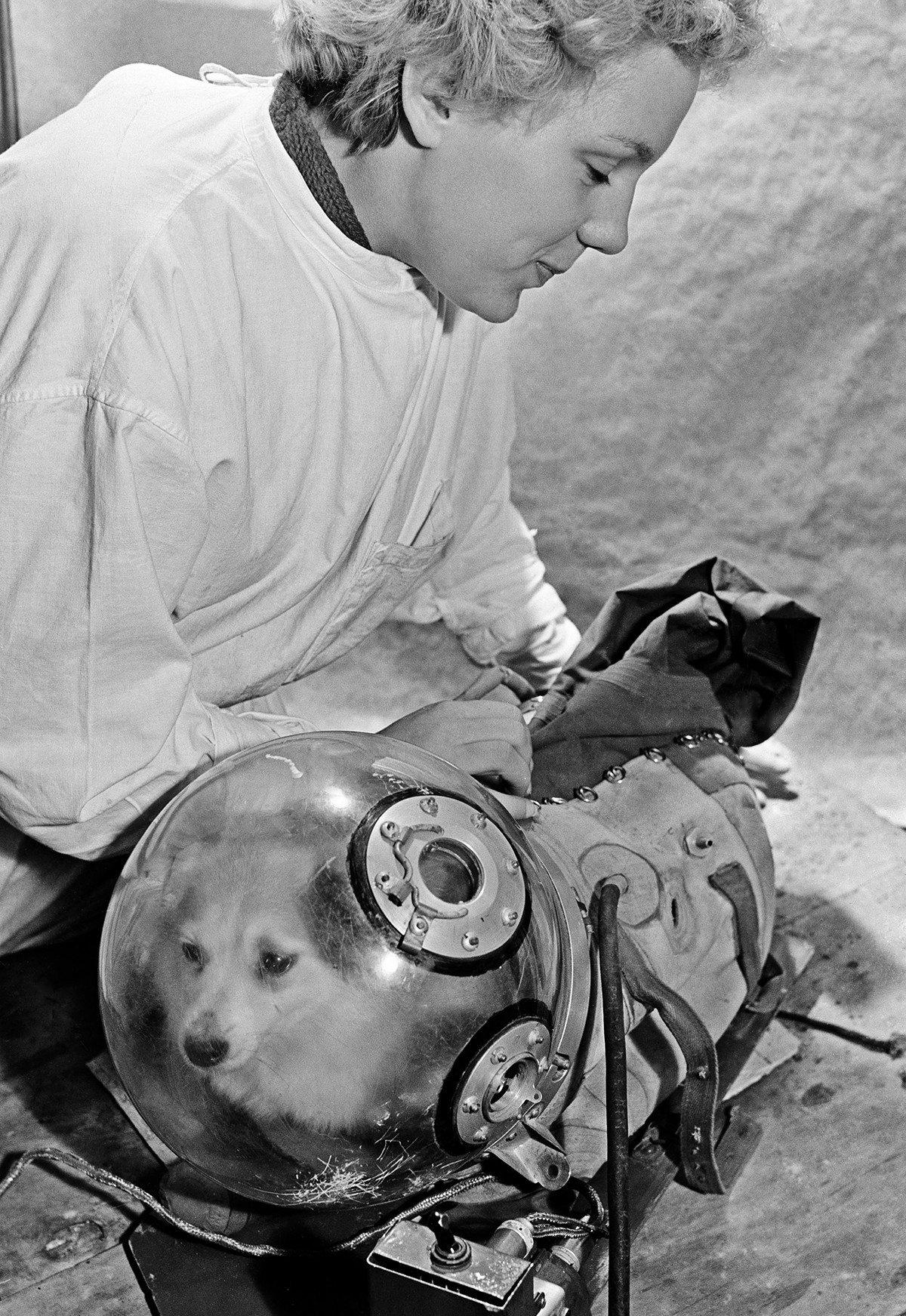 La asistente de laboratorio Natasha Kazakova entrena al perro espacial Kozyavka para un vuelo espacial de prueba en 1959.
