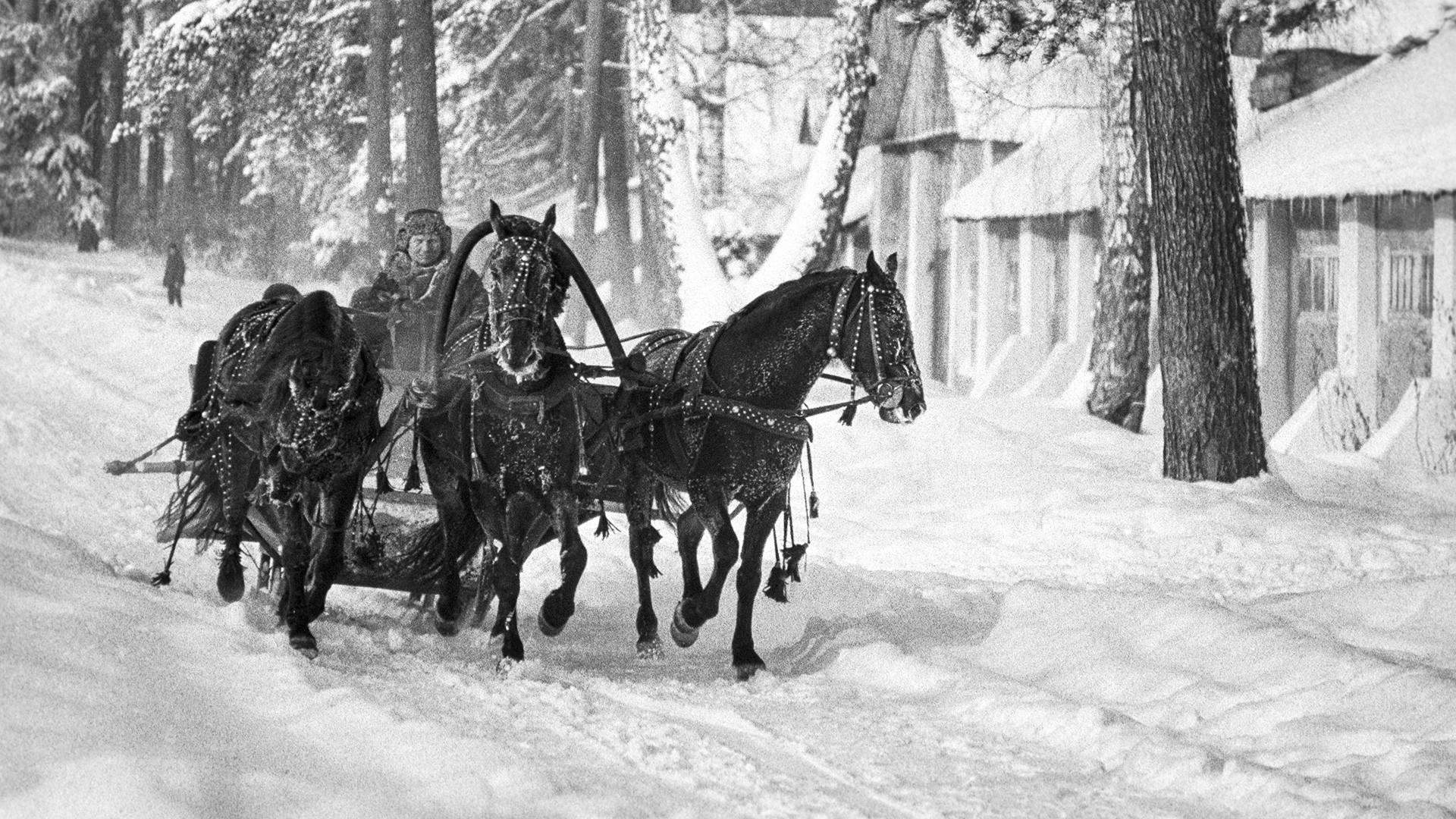 Sebuah troika (kereta kuda khas Rusia) membawa penumpang di Taman Ostankino, Moskow, 1975.
