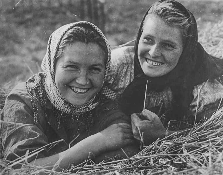 干し草畑で友人と、1950年代