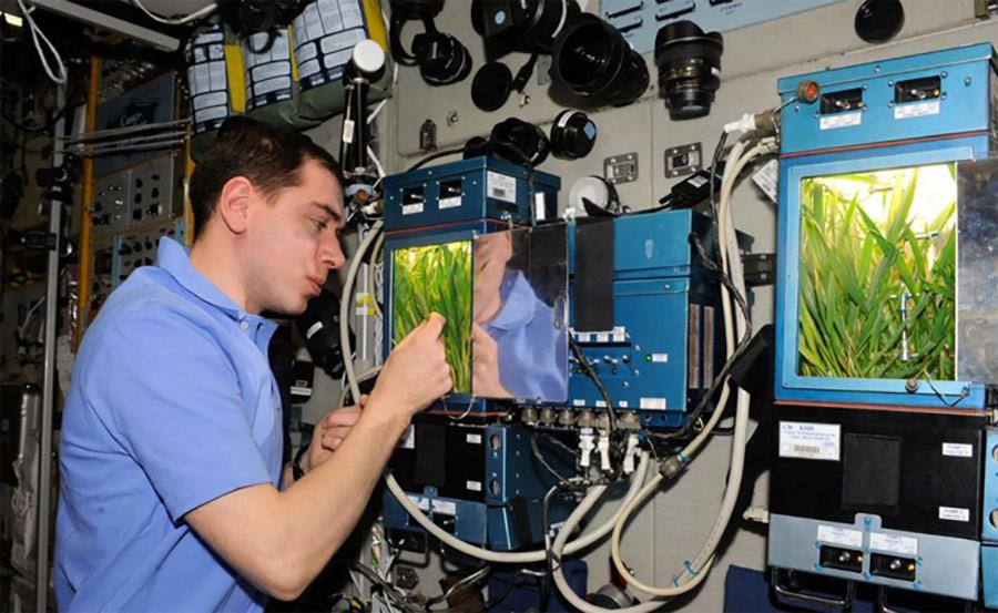 Kosmonaut Sergei Volkov dan rumah kaca Lada.