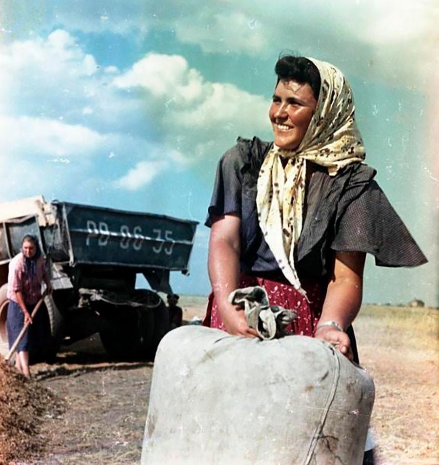 La agricultora Zhenia Alexándrova en la cosecha