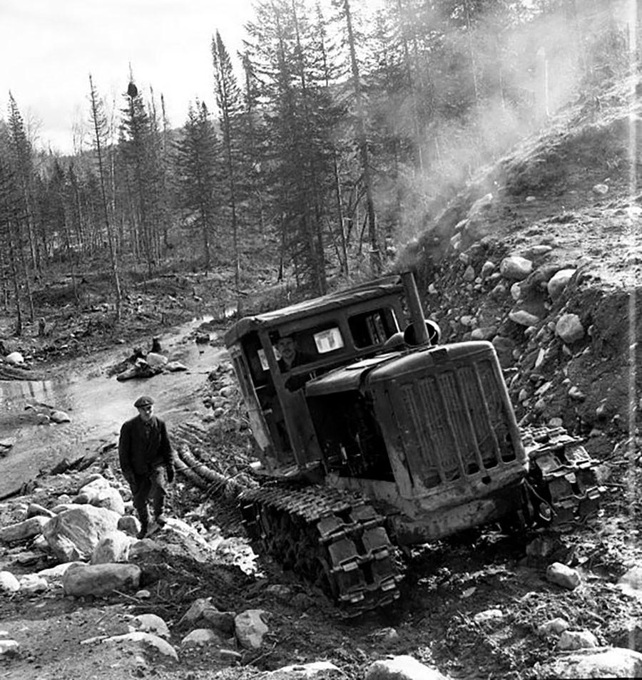 アルタイの森林開拓地の作業。1950年代末~1960年代初め