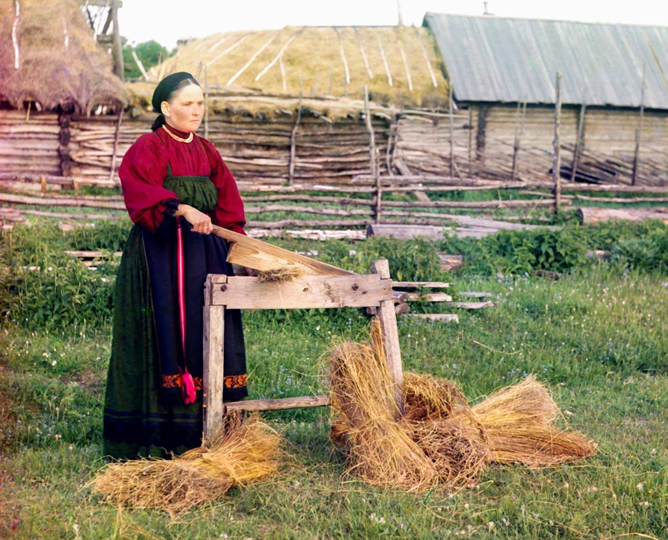 Une paysanne broyant du lin dans le gouvernorat de Perm