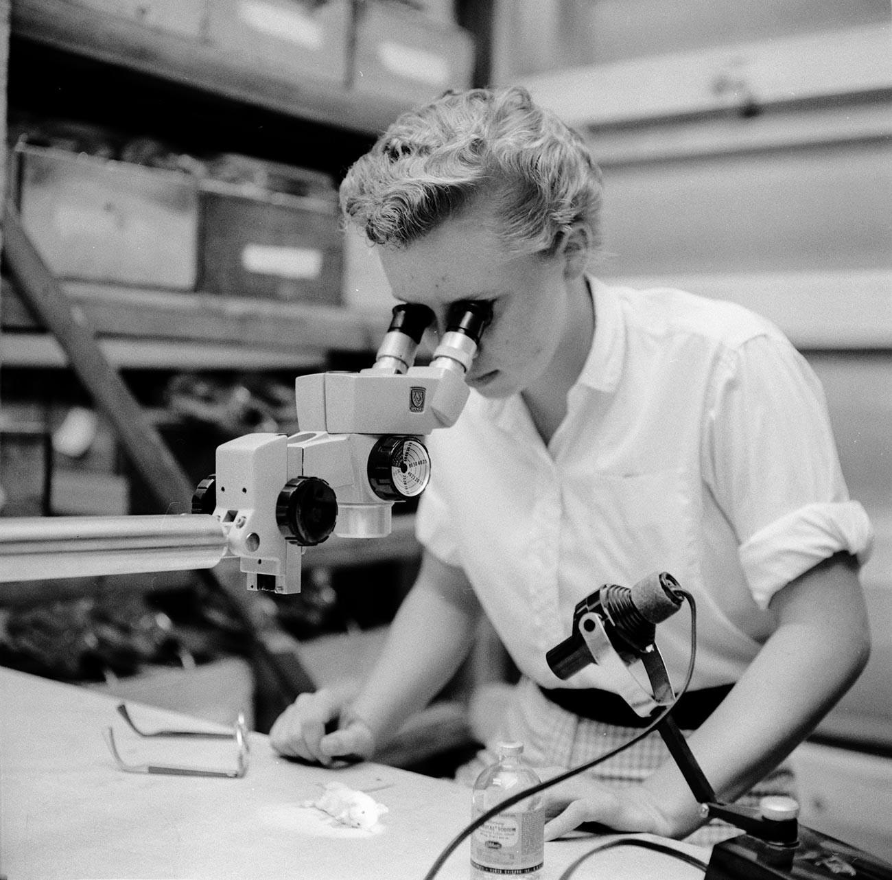Стереомикроскоп