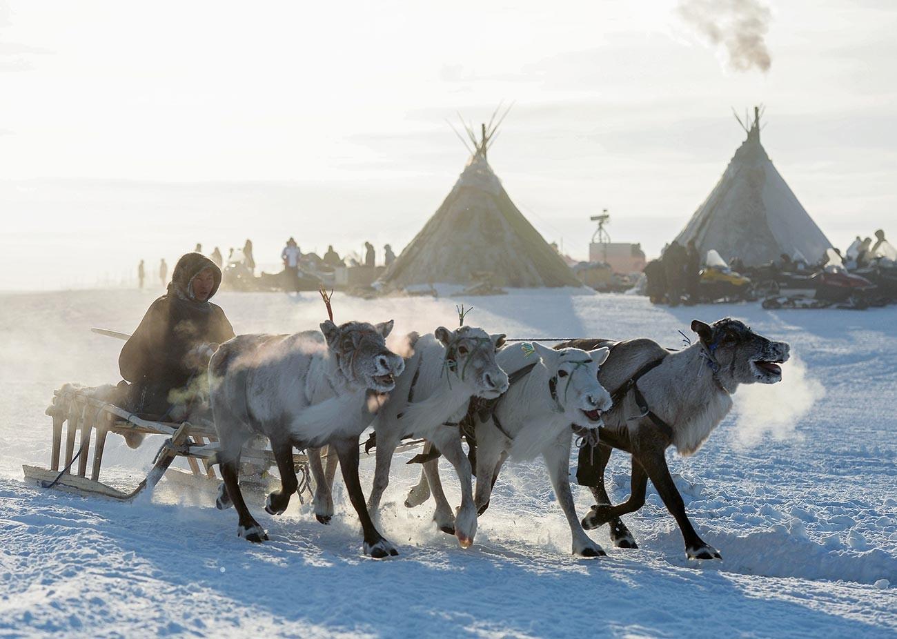 Participant de la Journée des éleveurs de rennes à Salekhard