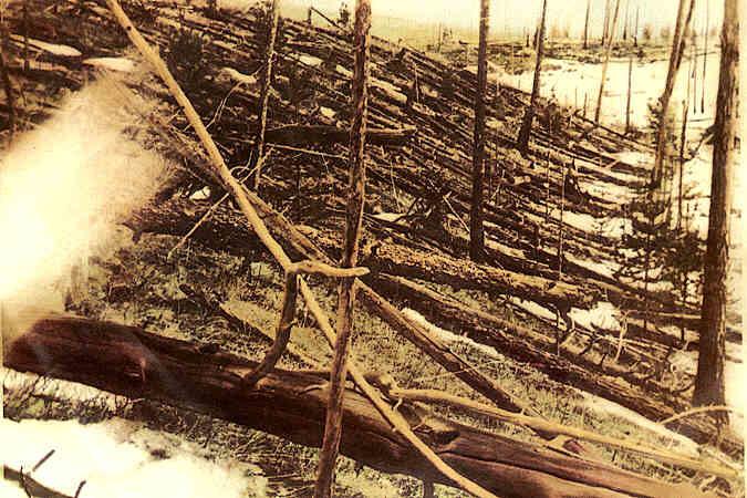 Árboles derribados por la terrible onda expansiva del impacto del misterioso meteorito de Tunguska.