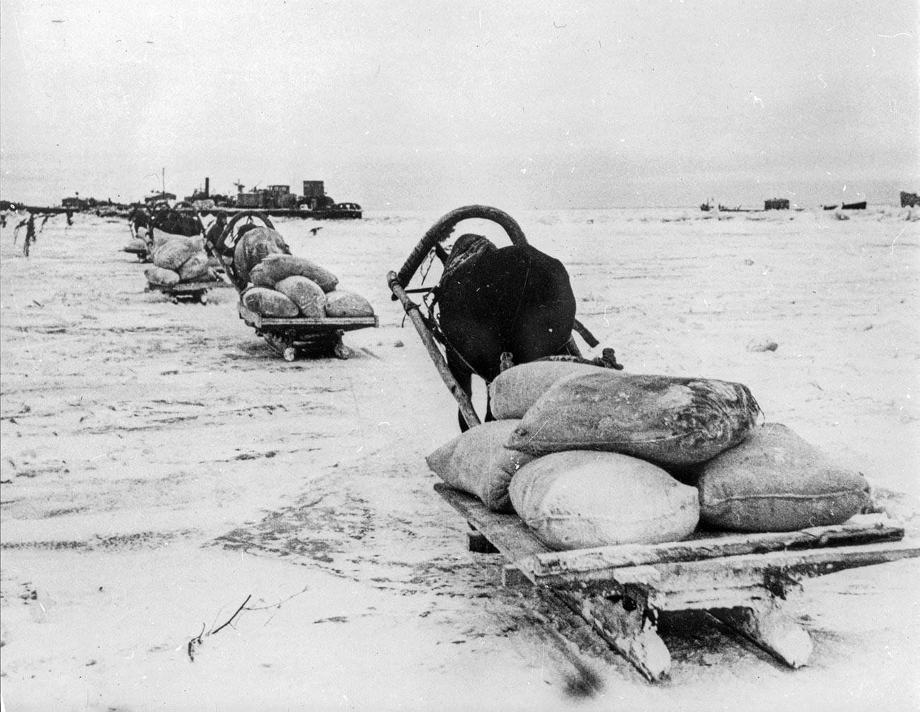 Во Ленинград за време на опсадата