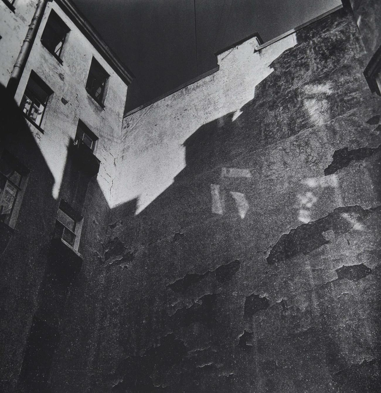 Noir sur blanc, 2008