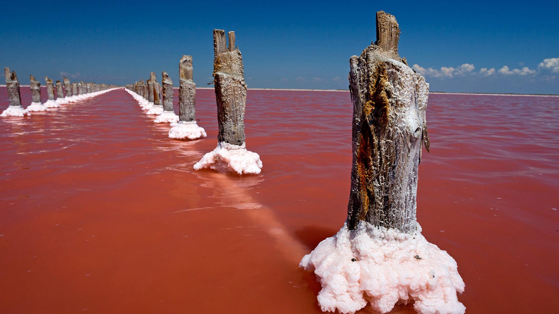 Danau air asin Sasyk-Sivash di Krimea, Rusia.