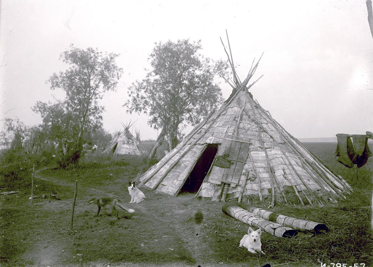 Sebuah chum beratap kulit kayu pohon birch di Yamal, 1936.