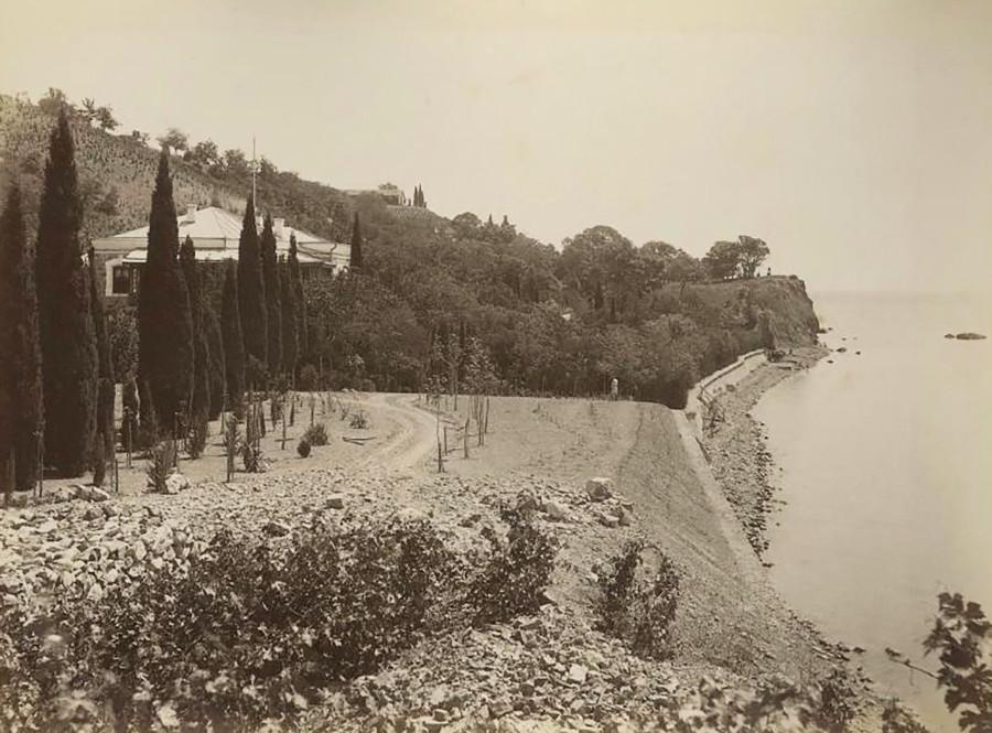 クリミアの海岸。1890年代
