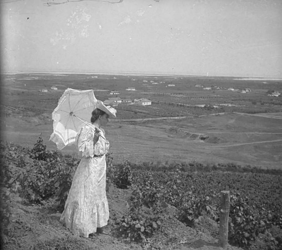 クリミアはワインも有名だ。ブドウ園を見る女性。1903年