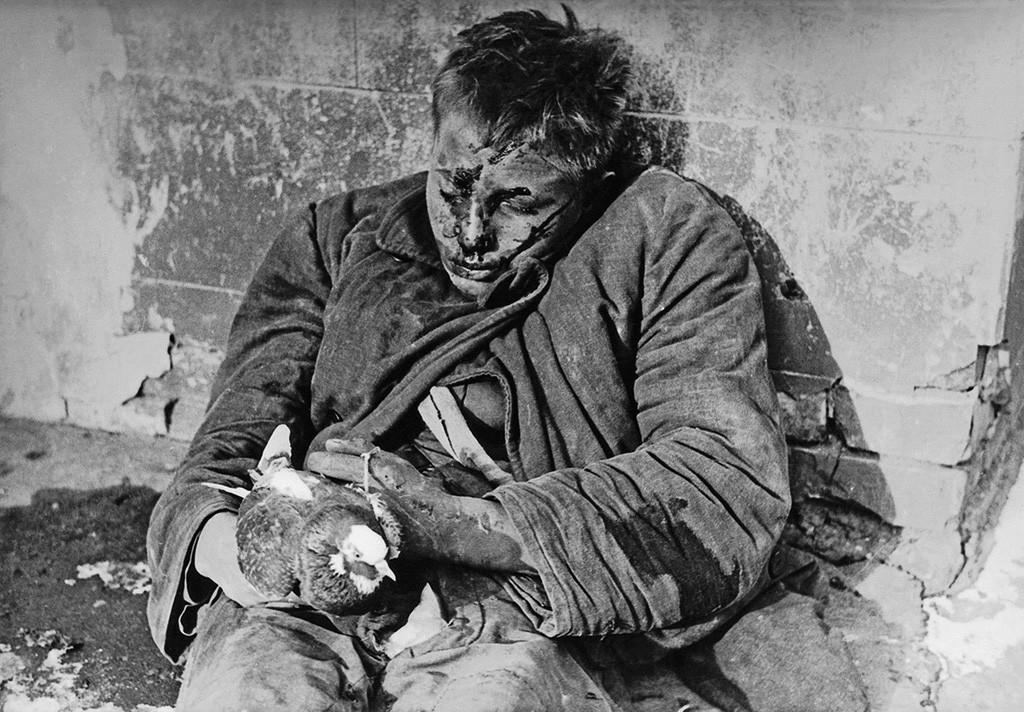 Vitia Tcherevichkine, 16 ans, abattu par les Allemands dans la ville occupée de Rostov-sur-le-Don pour avoir caché des pigeons qu'ils avaient ordonné de tuer, 1941