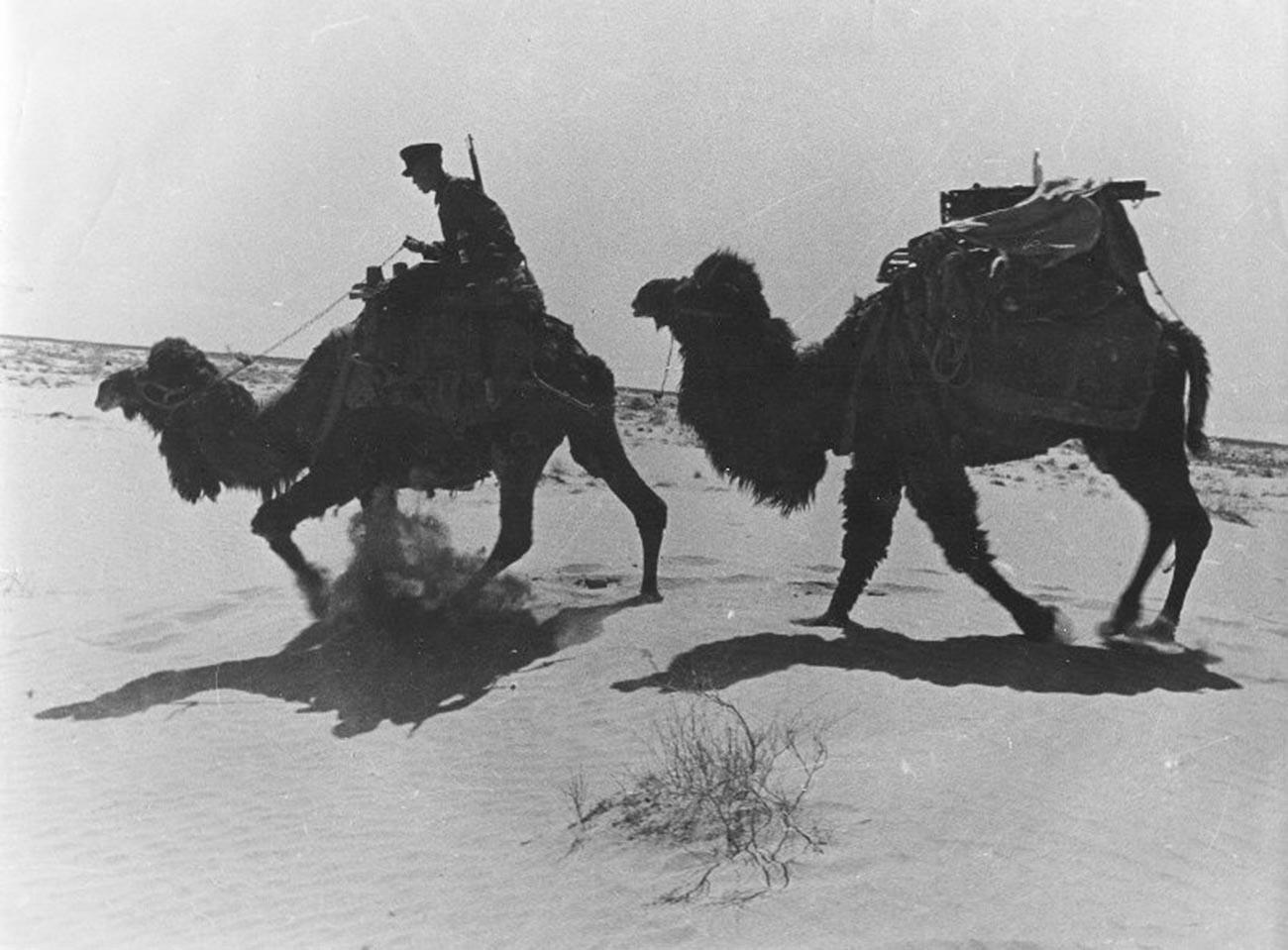 Penjaga perbatasan berpatroli di Turkmenistan, 1930-an.