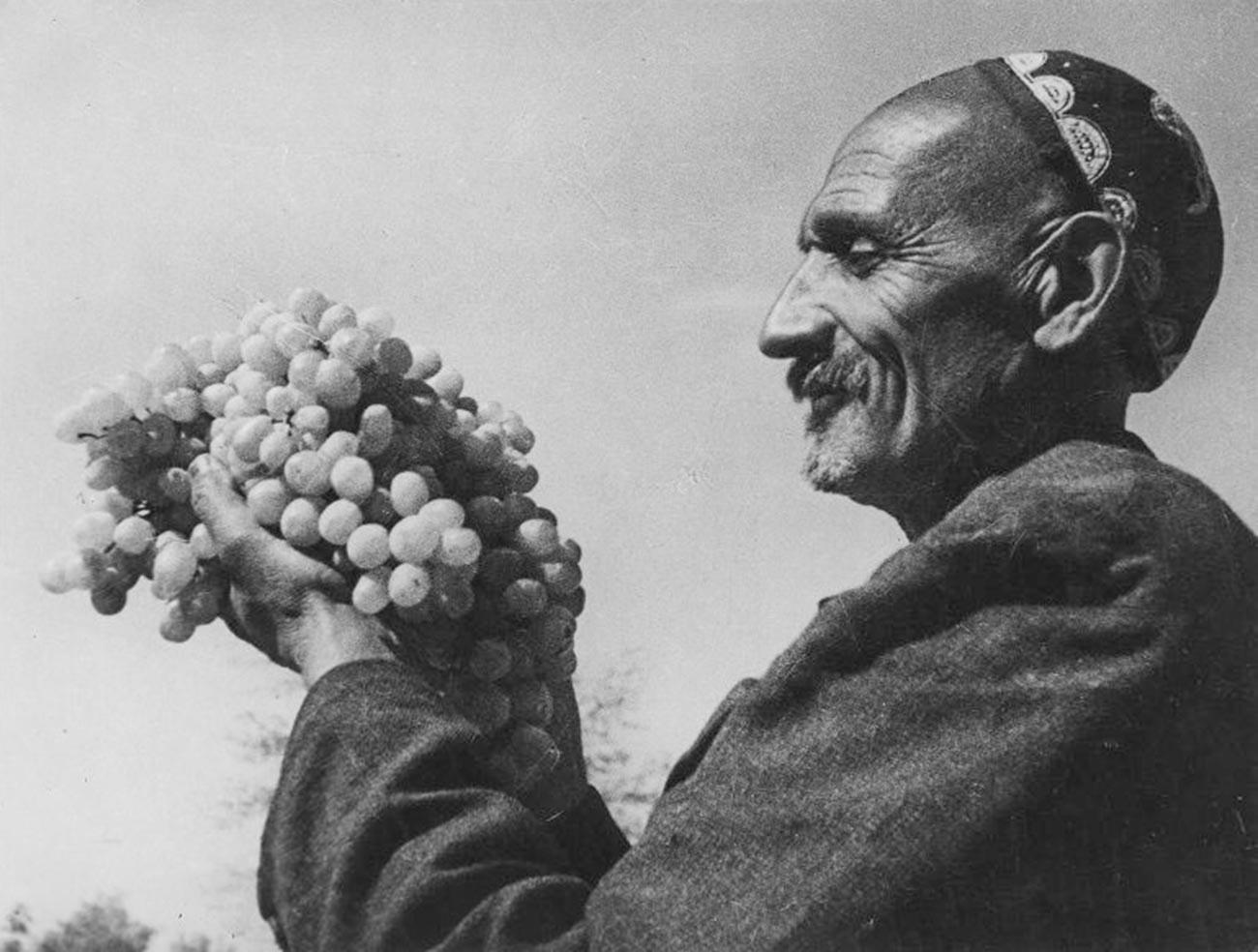 Penanam anggur terkemuka dan paling banyak dianugerahi penghargaan di Uzbekistan, Rizamat Musamukhamedov, yang membiakkan varietas anggur baru, Rundweis (alias Bayan Shirey), 1939.