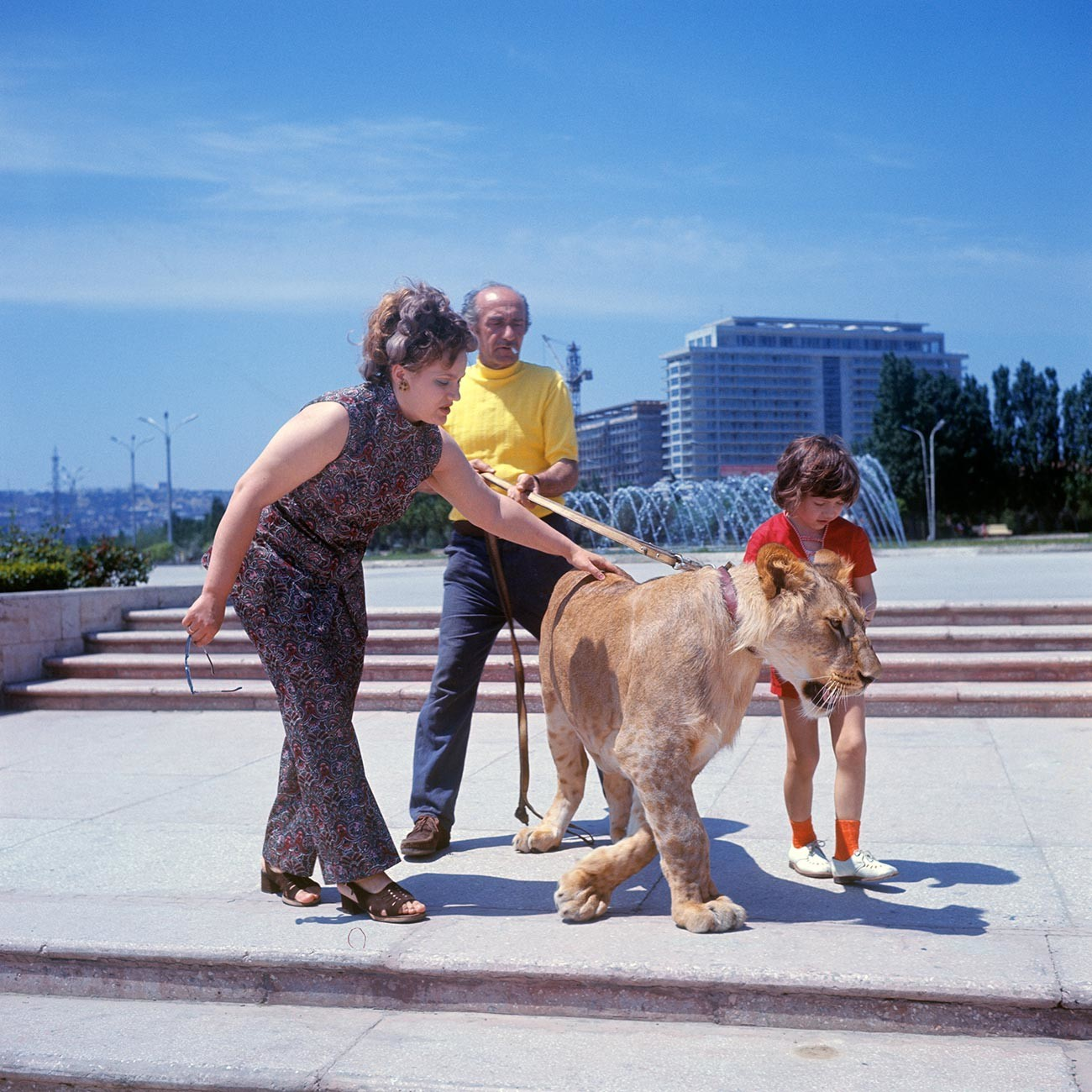 The Berberov family with their new pet lion cub King II on a walk