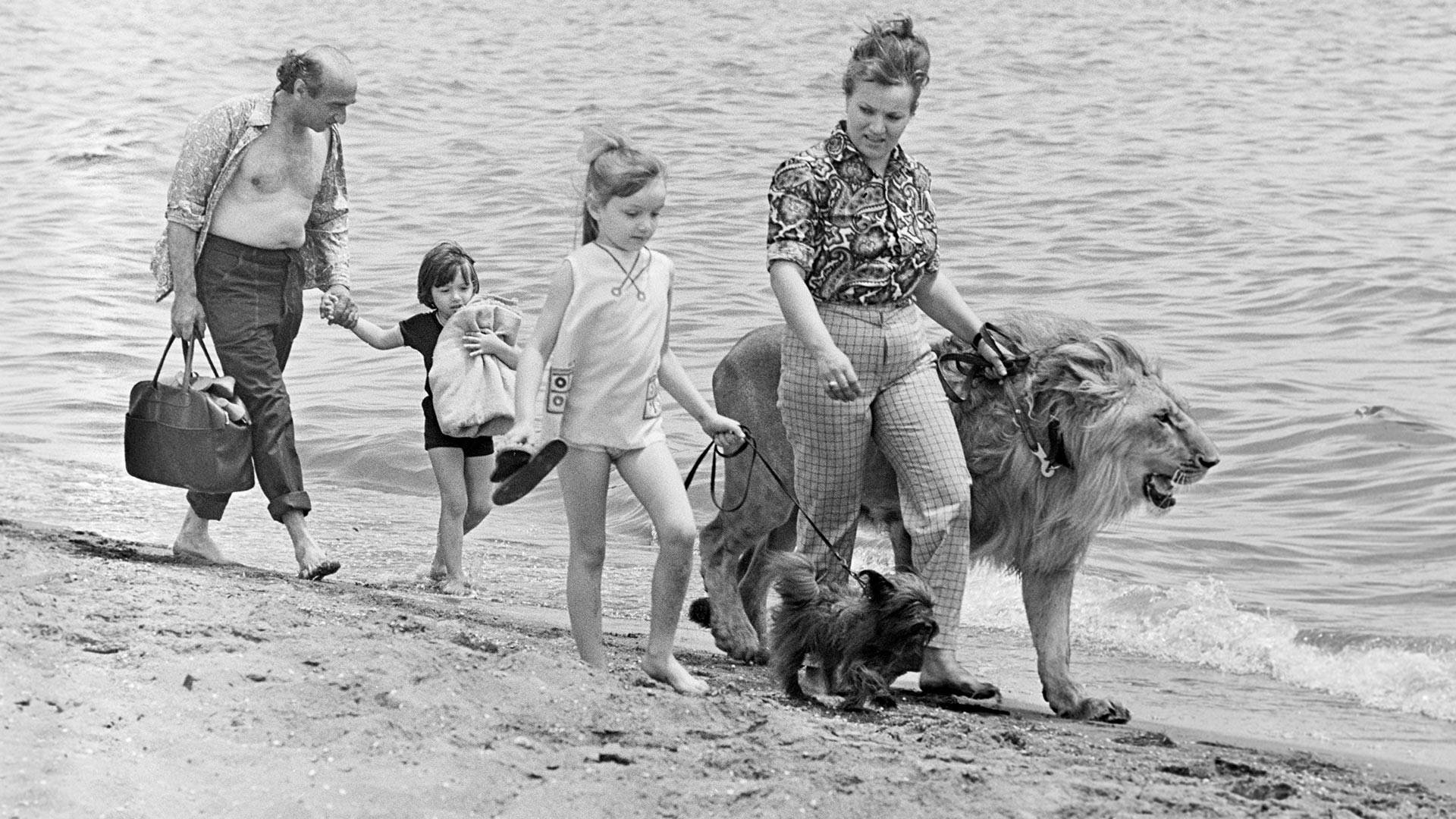 Il leone King con la famiglia Berberov durante una passeggiata in riva al mare, Baku